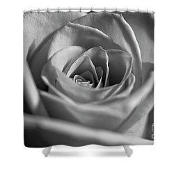 Shower Curtain featuring the photograph Black And White Rose by Micah May