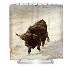 Black Beast Wanderer Shower Curtain by Joseph Denovan Adam