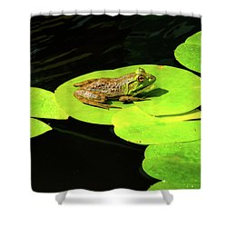 Shower Curtain featuring the photograph Blending In by Greg Fortier