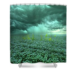 Blessings Shower Curtain by Phil Koch