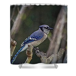 Blue Bird Of Happiness Shower Curtain