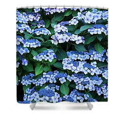 Miksang 12 Blue Hydrangea Shower Curtain by Theresa Tahara