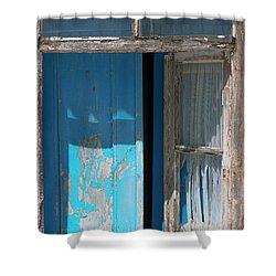Blue Window Shower Curtain by Edgar Laureano