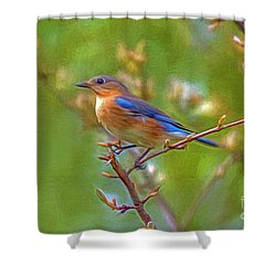 Bluebird Shower Curtain by Marion Johnson