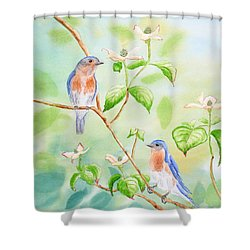 Bluebirds In Dogwood Tree Shower Curtain by Kathryn Duncan