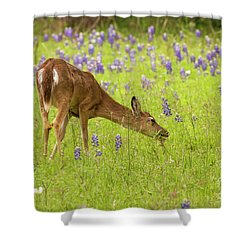 Bluebonnet Lunch Shower Curtain