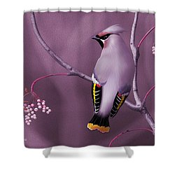 Bohemian Waxwing Shower Curtain by John Wills