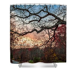 Branches Shower Curtain by Wayne King