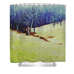Shower Curtain featuring the photograph Brandywine Landscape by Sandy Moulder