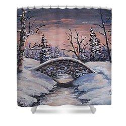 Bridge Of Solitude Shower Curtain