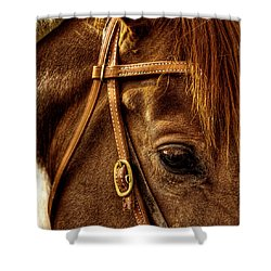 Bridled Shower Curtain