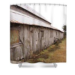 Broken Old Bones Shower Curtain by Kandy Hurley