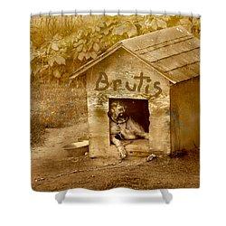 Brutis Shower Curtain