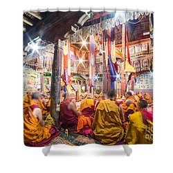 Buddhist Monks Praying In Thiksay Monastery Shower Curtain