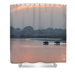 Shower Curtain featuring the photograph Buffalos Crossing The Yamuna River by Jean luc Comperat