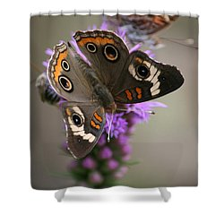 Shower Curtain featuring the photograph Buckeye Butterfly by Cathy Harper