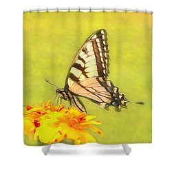 Butterfly Shower Curtain by Marion Johnson