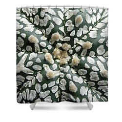 Cactus 1 Shower Curtain by Selena Boron