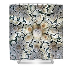 Cactus 2 Shower Curtain by Selena Boron