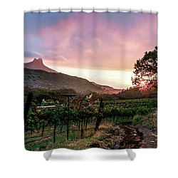 Colibri Sunrise Shower Curtain