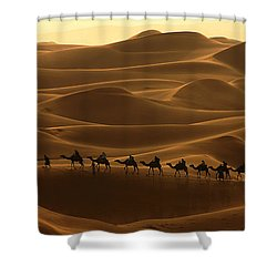 Camel Caravan In The Erg Chebbi Southern Morocco Shower Curtain