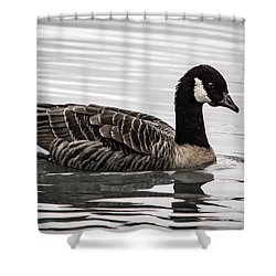 Canada Goose Shower Curtain by Jean Noren