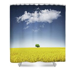 Shower Curtain featuring the photograph Canola Field by Bess Hamiti