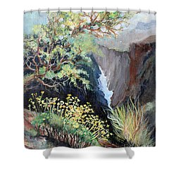 Canyon Land Shower Curtain