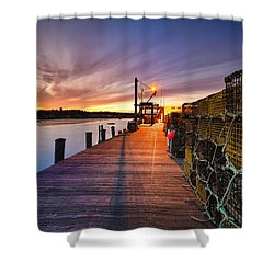 Cape Porpoise Shower Curtain