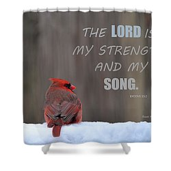 Cardinal In The Snowstorm With Scripture Shower Curtain