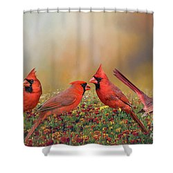 Cardinal Quartet Shower Curtain by Bonnie Barry
