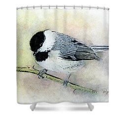 Carolina Chickadee Shower Curtain