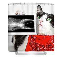 Cat With X Ray Plate Shower Curtain
