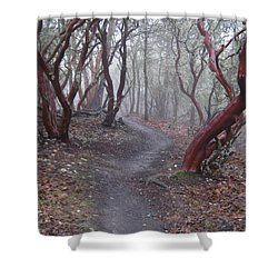 Cathedral Hills Serenity Shower Curtain