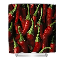 Cayenne Shower Curtain by Daniel Troy