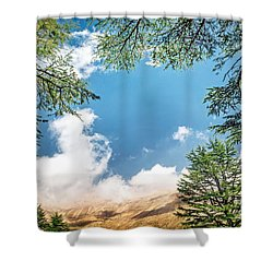 Cedars Of Lebanon Shower Curtain