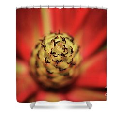 Shower Curtain featuring the photograph Centrifugal by Stephen Mitchell