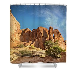 Chesler Sunset Shower Curtain