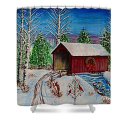 Christmas Bridge Shower Curtain by Melvin Turner