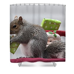 Christmas Squirrel Shower Curtain