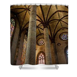 Shower Curtain featuring the photograph Church Of The Jacobins Interior by Elena Elisseeva