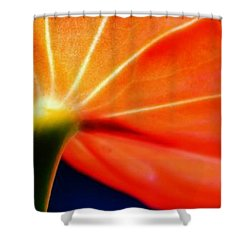 Close Up Red Shower Curtain by Werner Lehmann