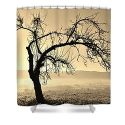 cold Winter day.... Shower Curtain by Werner Lehmann