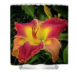 Colorful Lily  Shower Curtain