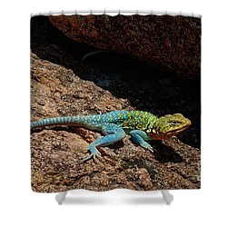 Colorful Lizard II Shower Curtain