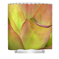 Shower Curtain featuring the photograph Colors Of Nature by Julie Palencia