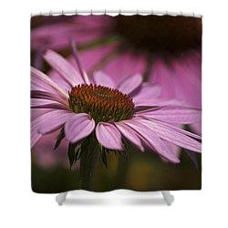 Cone Flower Shower Curtain by Elsa Marie Santoro