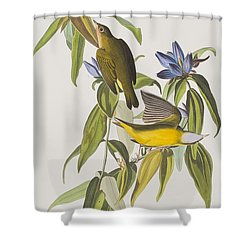 Connecticut Warbler Shower Curtain