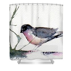 Contented Shower Curtain