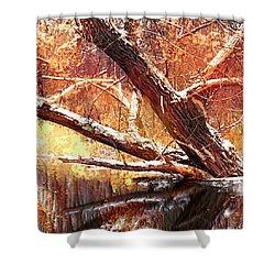 Cordukes Creek  Shower Curtain by Jim Vance